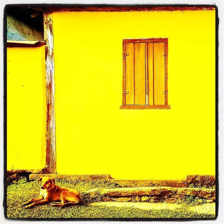 Foto: Regina Pereira