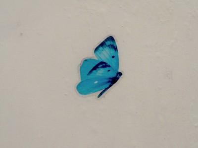 decalque de borboleta no muro